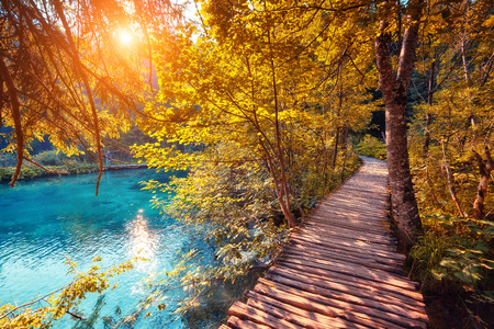Majestic view on turquoise water and sunny beams in the Plitvice Lakes National Park, Croatia