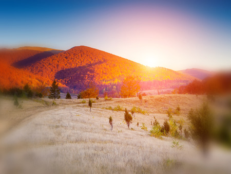 majestic mountain: Majestic colorful landscape with sunny beams at mountain valley in Carpathian, Ukraine