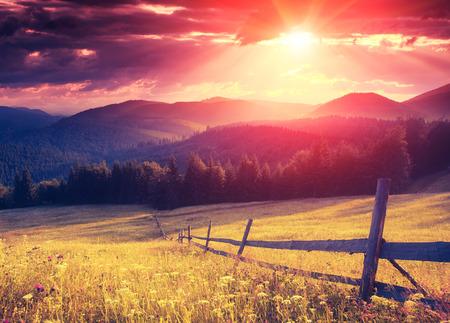 Fantastic sunny hills glowing by sunlight. Dramatic scenery. Carpathian, Ukraine, Europe. Beauty world. Retro style filter. Instagram colorful toning effect. 스톡 콘텐츠