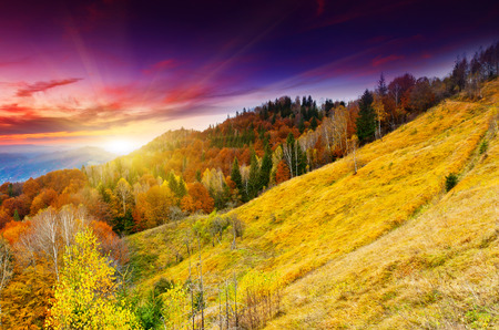 mist: Majestic sunset in the mountains landscape. Dramatic sky.