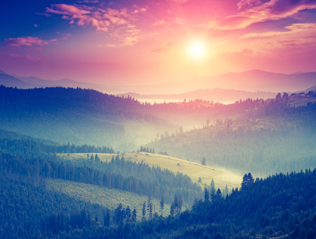 Fantastic sunny hills glowing by sunlight. Dramatic scenery. Carpathian, Ukraine, Europe. Beauty world. Retro style filter.  写真素材