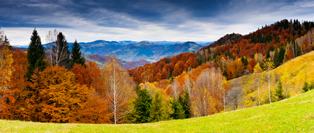 autumn sky: the mountain autumn landscape with colorful forest