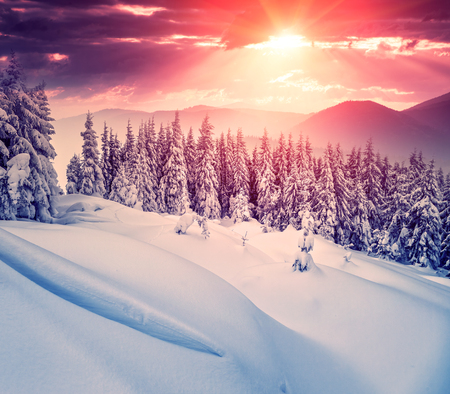 winter holiday: Fantastic evening landscape in a colorful sunlight. Dramatic wintry scene. National Park Carpathian, Ukraine, Europe. Beauty world. Retro style filter. Instagram toning effect. Happy New Year!