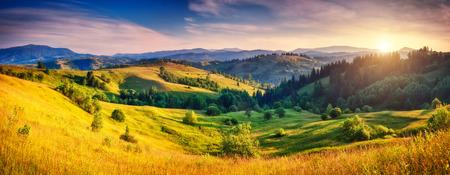 green world: Beautiful green hills glowing by sunlight at twilight. Dramatic scene. Colorful sky. Carpathian, Ukraine, Europe. Beauty world.