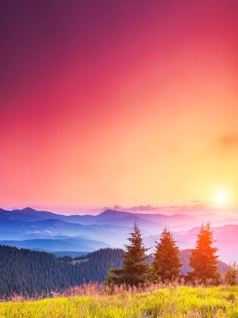 日光で輝く幻想的な日当たりの良い丘。劇的な朝のシーン。カルパチア、ウクライナ、ヨーロッパ。美の世界。