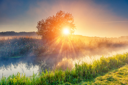Fantastische mistige rivier met verse groene gras in het zonlicht. Zon balken door boom. Dramatische kleurrijke landschap. Seret, Ternopil. Oekraïne, Europa. Beauty wereld. Stockfoto