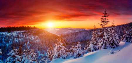 Fantastic evening landscape glowing by sunlight. Dramatic wintry scene. Natural park. Carpathian, Ukraine, Europe. Beauty world. Retro filter.  Foto de archivo