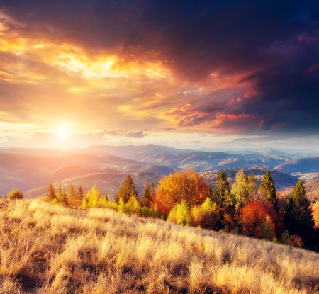 majestic mountain: Majestic colorful landscape with sunny beams at mountain valley. Natural park. Dramatic morning scene. Red and yellow autumn leaves. Carpathians, Ukraine, Europe. Beauty world.