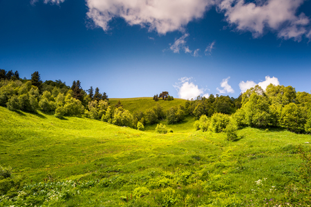 meadows: Beautiful view of rural alpine landscape. Sunny hills under cloudy sky. Upper Svaneti, Georgia, Europe. Caucasus mountains. Beauty world.