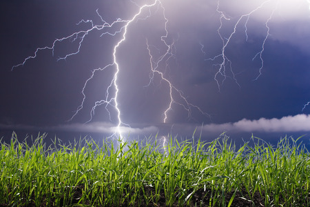 sky and grass: summer storm beginning with lightning Stock Photo