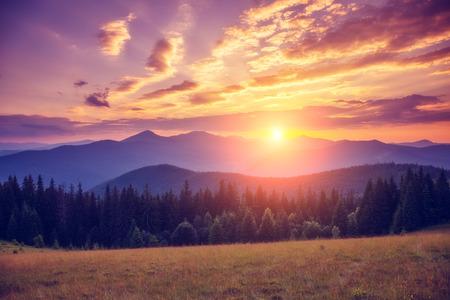 sky background: Beautiful green hills glowing by warm sunlight at twilight. Dramatic scene in Carpathian, Ukraine Stock Photo
