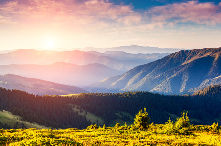 Majestic panorama of green mountains with sunny beams. Dramatic scene in National Park, Carpathian, Ukraine