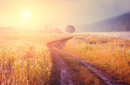 Fantastic foggy river with fresh grass in the sunlight. Dramatic unusual scene. Warm sundown on Dnister. Ukraine, Europe. Beauty world. Retro and vintage style, soft filter.  toning effect.