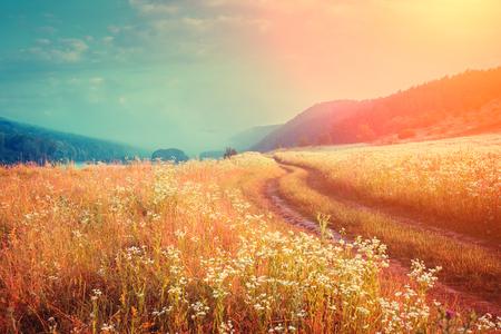Fantastischer nebeliger Fluss mit frischem Gras im Sonnenlicht. Dramatische ungewöhnliche Szene. Warmer Sonnenuntergang auf Dnister. Ukraine, Europa. Schönheitswelt. Retro und Vintage-Stil, weicher Filter. tonisierender Effekt.