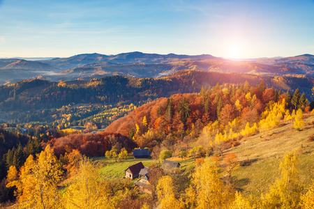 majestic mountain: Majestic trees with sunny beams at mountain valley. Dramatic and picturesque morning scene. Red and yellow leaves. Warm toning effect. Carpathians, Sokilsky ridge. Ukraine