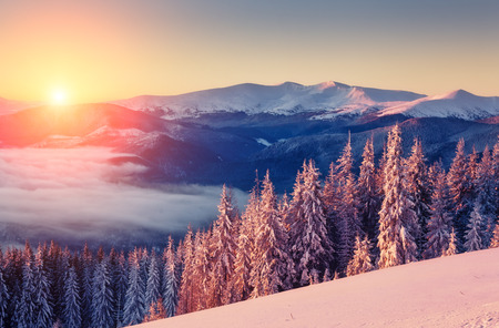 mountain sunset: Majestic landscape glowing by sunlight in the morning. Dramatic and picturesque wintry scene. Carpathian, Ukraine Stock Photo