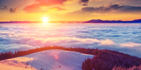 Majestic foggy landscape glowing by sunlight in the morning. Dramatic and picturesque wintry scene. Carpathian, Ukraine