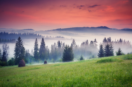 Fantastic summits glowing by sunlight. Dramatic and picturesque morning scene. Carpathian, Ukraine