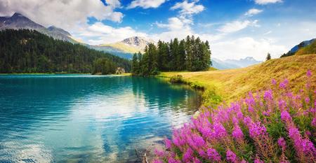 Fantastische azuurblauwe meer Champfer. Ongewone en schilderachtige scène. Silvaplana dorp, district Maloja in het Zwitserse kanton Graubunden, Alpen.