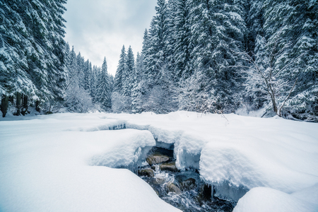 Miracle river at sunlight in the morning. Dramatic and picturesque wintry scene. Carpathian, Ukraine