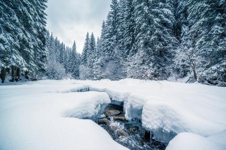 fiume Miracolo a luce del sole del mattino. scena invernale drammatica e pittoresca. Carpazi, Ucraina