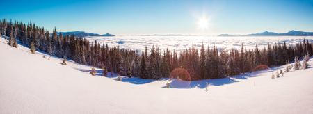 Majestic winter landscape glowing by sunlight in the morning. Dramatic wintry scene. Carpathian, Ukraine