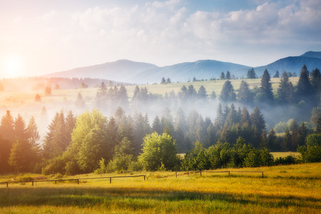 Fantastic green hills glowing by sunlight. Dramatic morning scene. Picturesque photo. Location place Carpathian, Ukraine, Europe. Artistic picture. Beauty world. Stock Photo