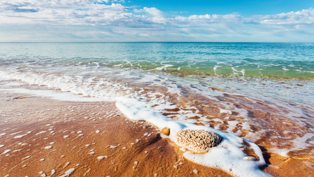 Fantastic view of the azure sea and yellow sand. Clear sky on a sunny day with fluffy clouds. Picturesque and gorgeous scene. Location place: Island Sicily, Italy, Europe. Beauty world.