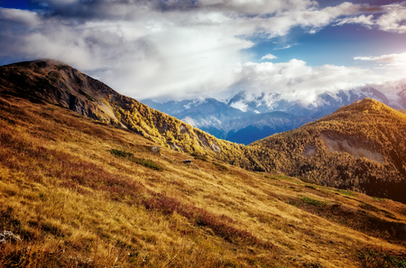 mestia: Fantastic views of the magical place at the foot of Mt. Ushba. Picturesque scene. Location famous resort Mestia, Upper Svaneti, Georgia, Europe. High Caucasus ridge. Artistic picture. Beauty world. Stock Photo