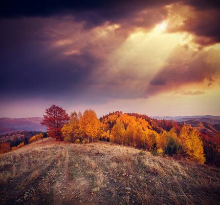 太陽の光の色の木を照らします。劇的な美しい朝のシーン。赤や黄色の葉。暖かい調子を整える効果。場所は、Sokilsky リッジ カルパチアンを配置します。ウクライナ、ヨーロッパ。美の世界。 写真素材 - 73278740