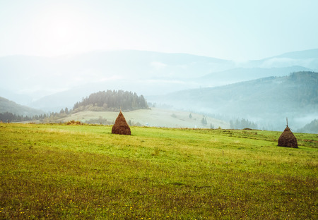 View of the green hills which glowing by sunlight. Dramatic scene and picturesque picture. Location place Carpathian, Ukraine, Europe. Beauty world. Retro and vintage style. Instagram toning effect.