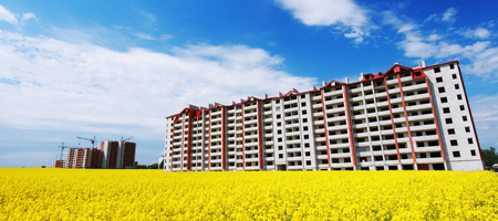 Construction site with crane over yellow field Imagens - 81568504
