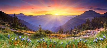 Majestueuze zonsondergang in de bergen landschap. HDR beeld