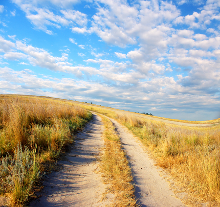 夏の草原と青空が広がって