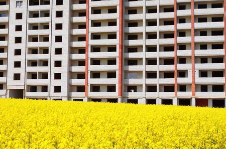 Residential building under construction with beautiful yellow field