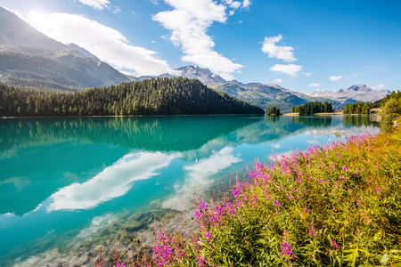 Great view of the azure pond Champfer in alpine valley. Location Swiss alps, Silvaplana village, district of Maloja, Europe. Stock Photo - 85415839