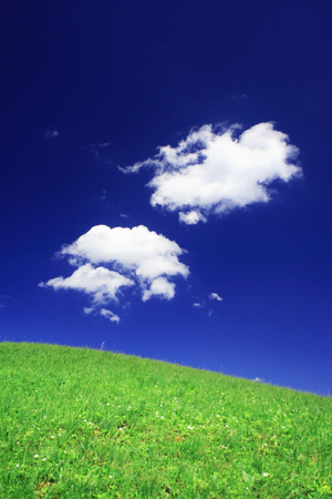 spring field and the beautiful blue sky Stock Photo - 87662978