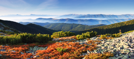 Colorful autumn view of landscape mountains