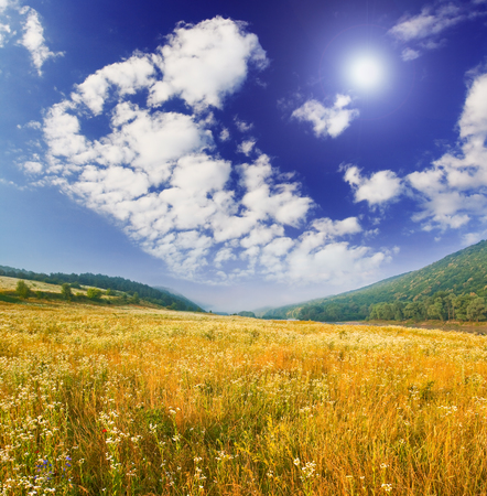 spring field and the beautiful blue sky Stock Photo - 87662874