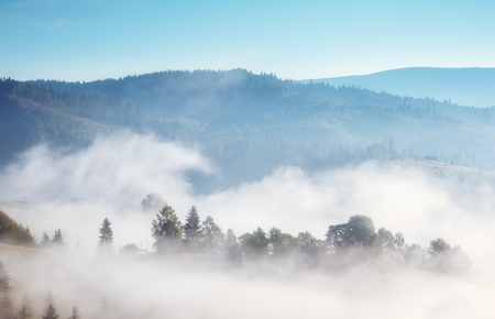 햇빛에 의해 빛나는 고산 계곡의 위대한보기. 아름 답 고 화려한 아침 장면입니다. 인기있는 관광 명소. 위치 장소 카르 파 티아 산맥, 우크라이나, 유