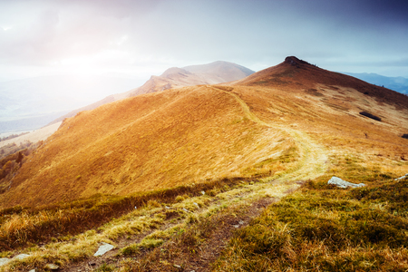 Majestic yellow hills glowing by sunlight a day. Dramatic scene and picturesque picture. Location place Carpathian, Ukraine, Europe. Beauty world. Soft filter, vintage style. Instagram toning effect. Stock Photo - 90413570