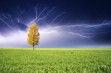 Stormy landscape with heavy clouds and the tree Stock Photo - 95598403