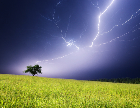 Stormy landscape with heavy clouds and the tree Stock Photo - 95709996