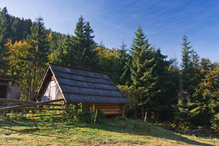 An old house during fall of the year in forest Фото со стока