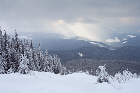 A frosty day is in mountains