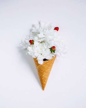 Lovely unique flower in ice cream cone on white background. Floral arrangement, flat lay styling. Top view. Creative still life idea of spring wallpaper. Picturesque and gorgeous scene. Beauty world.