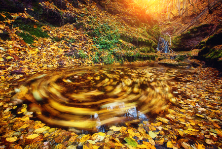 Awesome view of the unique waterfall and yellow leaves in day light. Dramatic and gorgeous morning scene. Location place Rusyliv Falls, Carpathian, Ukraine, Europe. Explore the worlds beauty.
