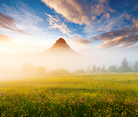 Scenic surroundings near the farm in the morning light. Gorgeous and picturesque scene. Location place Carpathian, Ukraine Europe. Wonderful wallpaper. Creative collage. Explore the worlds beauty.