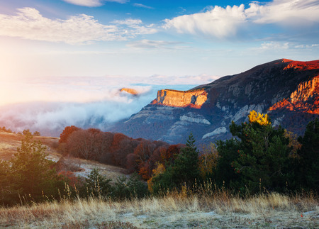 Picture of a scenic canyon in morning light. Location Crimea, Crimean peninsula, Ukraine, Europe. Perfect wallpapers. Discover the beauty of earth. Great photo of wild area. Concept of active tourism
