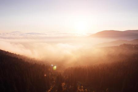 Scenic image of misty range. Locations Carpathian national park, Ukraine, Europe.